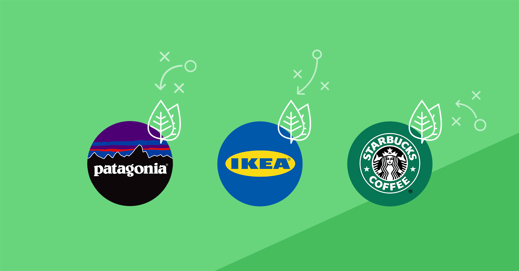 customer experience green products brand